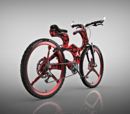M. Jordano garbei sukurtas dviratis
